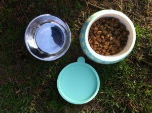 PetSmart Martha Stewart 3-Piece Bowl Set for Dogs