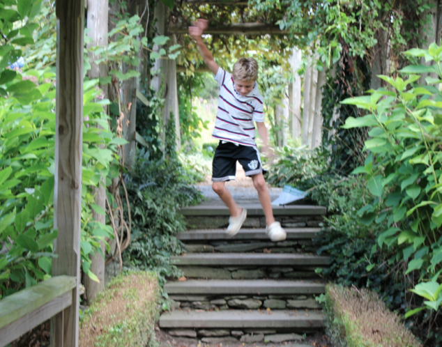 William Jumping the Steps at Green Animals Topiary Garden