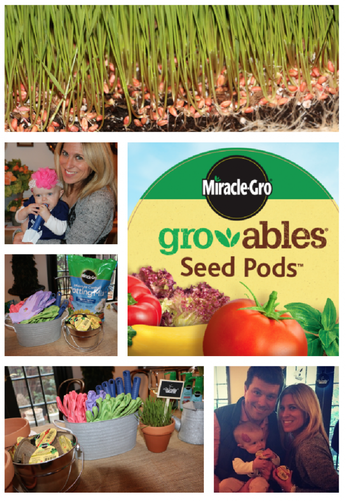 Miracle-Gro Gro-ables