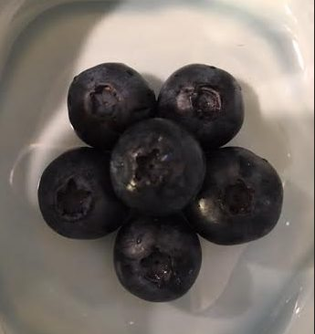 ~ Each Blueberry has a star ~