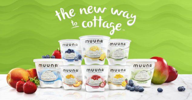 Muuna Cottage Cheese