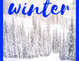 101 Winter Activities