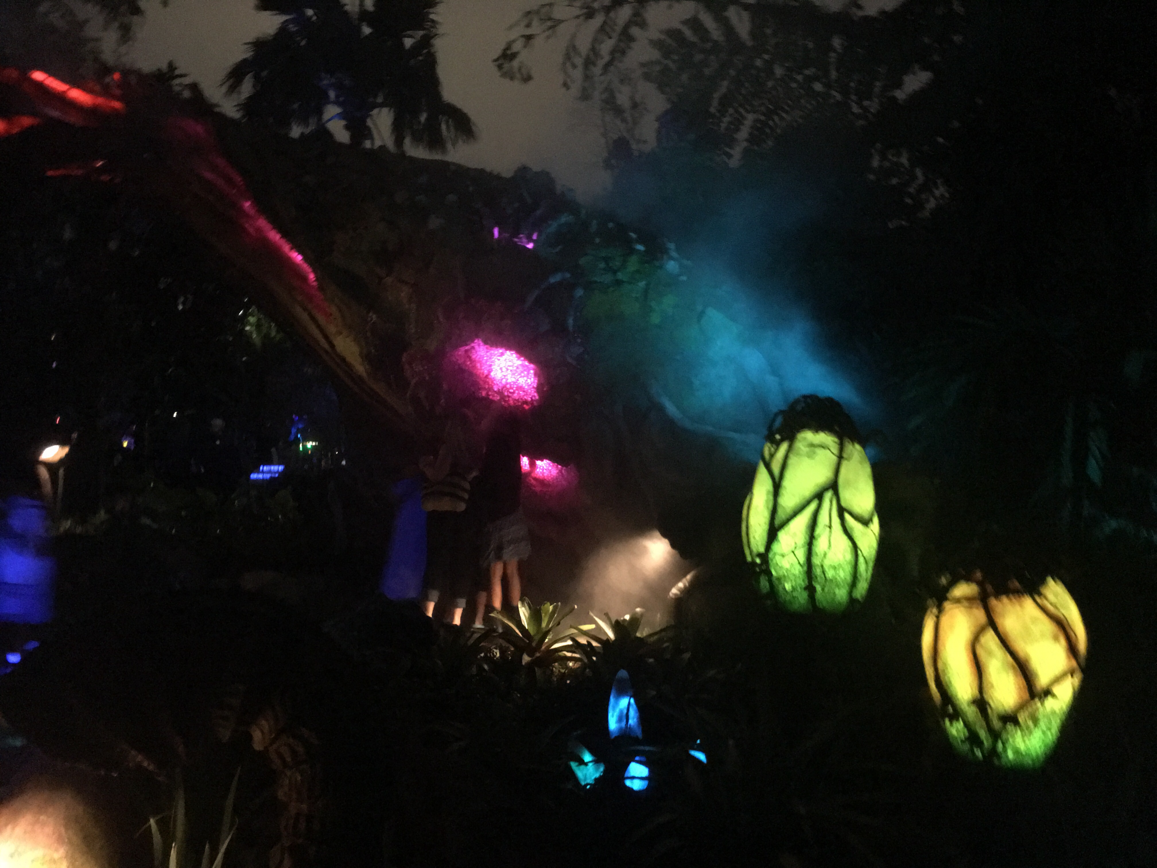 It's a wonderland of color and light at Pandora: The World of Avatar.