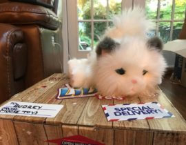 Toy Review: Little Live Pet - Cuddles the Kitten