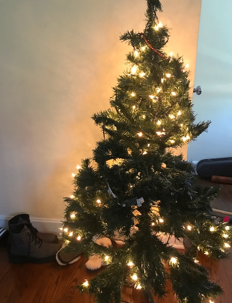 Small Christmas trees throughout the house help make your home festive.