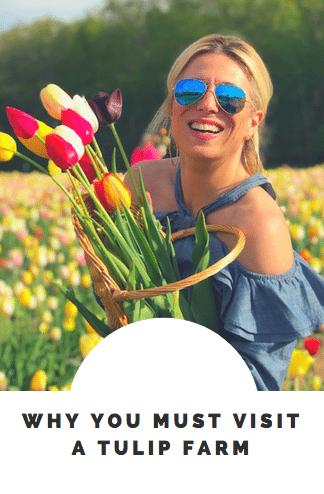 Visit a Tulip Garden