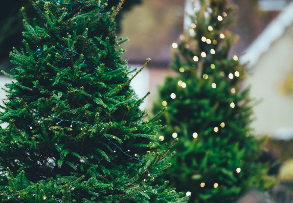 25 Ways to Spread Cheer and Give Back this Holiday Season