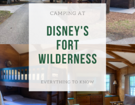 Disney's Fort Wilderness Campground