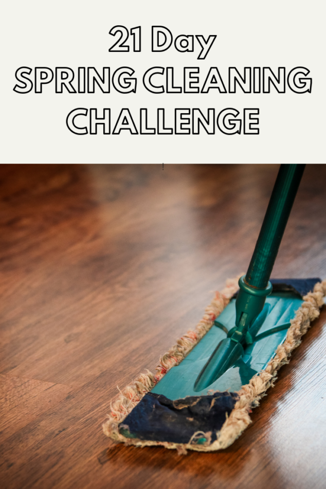 21 Day SPRING CLEANING CHALLENGE