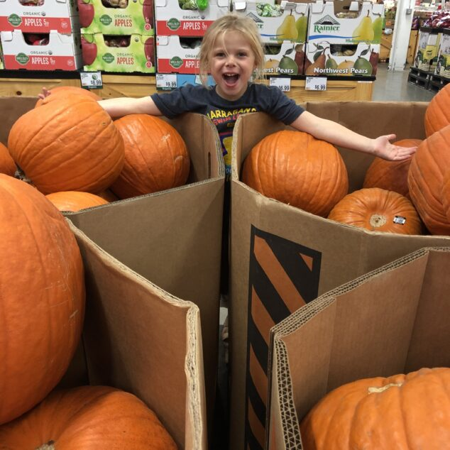 BJ's Wholesale Club - Fall Decor