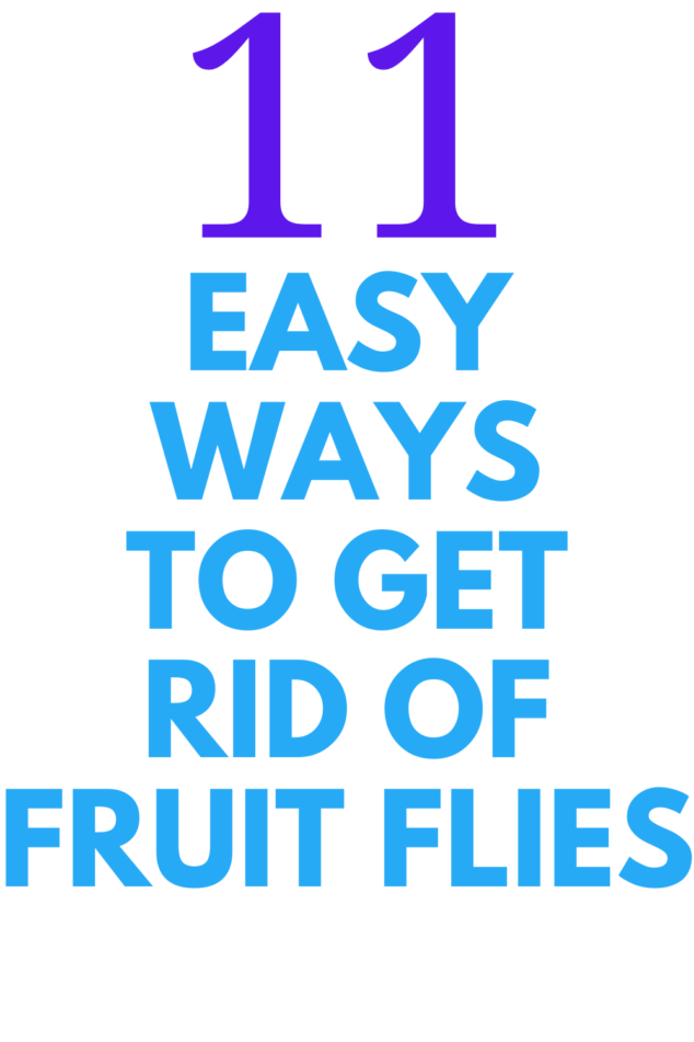11 Easy Ways To Get Rid of Fruit Flies