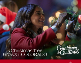 A Christmas Tree Grows in Colorado